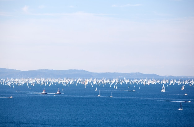 Barcolana, the trieste regatta