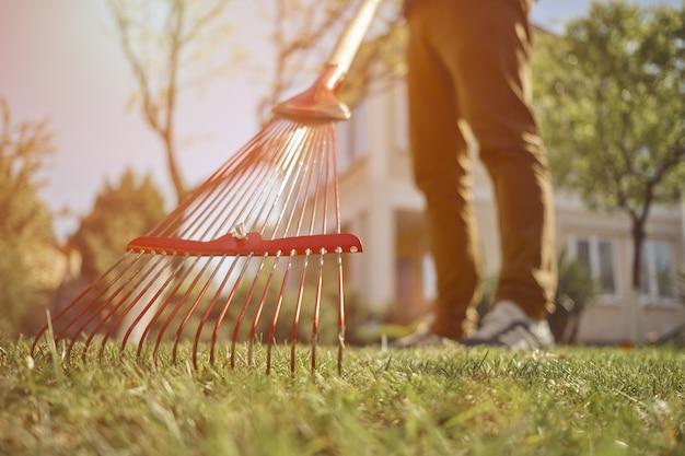 무명의 남자의 맨손이 햇살 가득한 정원에서 가지치기 가위로 녹색 유카 또는 작은 야자수를 자르고 있습니다