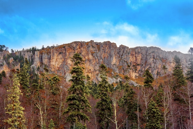 Bare high cliffs with forest at the foot of the mountain