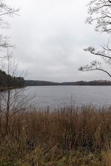 벌거 벗은 나무, 호수 기슭에서 자라는 마른 풀, 흐린 날씨에 촬영 된 가을 어둡고 황량한 풍경