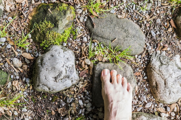 A barefoot aerial view on stone surface in the forest
