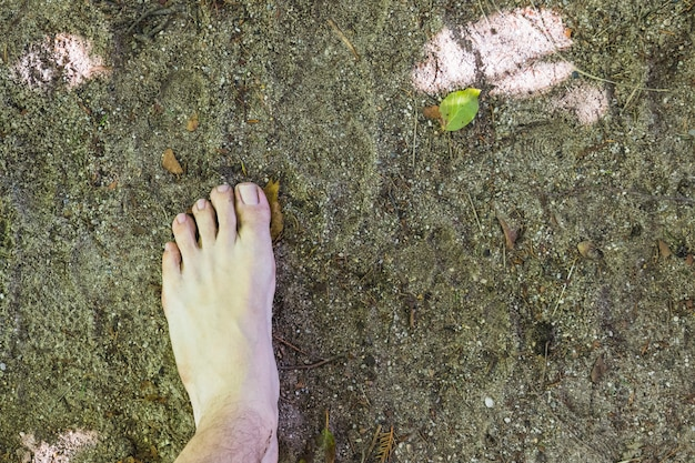 A barefoot aerial view on surface in the forest