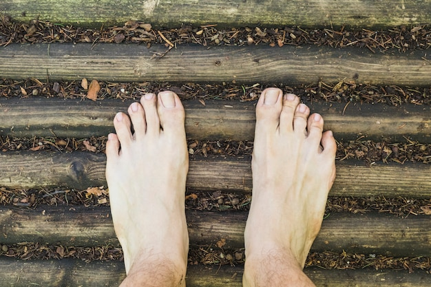 A barefoot aerial view on wood surface in the forest