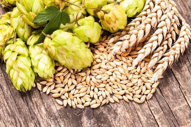 Ячмень и хмель на деревянном фоне. концепция пива