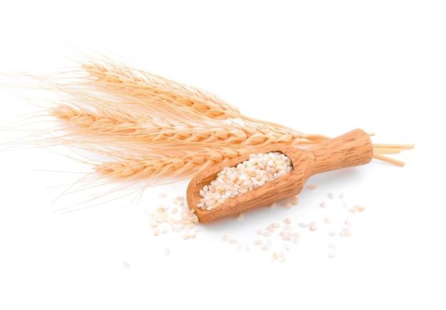 白い背景の上の大麦