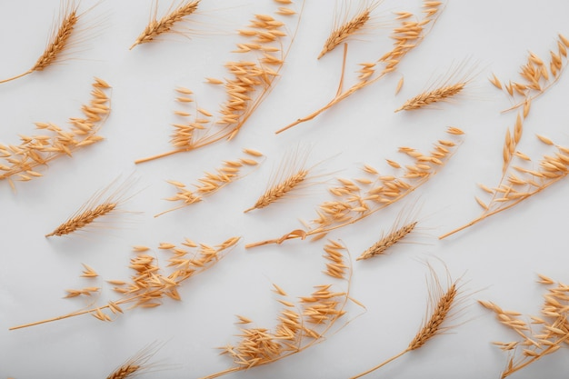 보리 밀 곡물 패턴입니다. 평면도 흰색 배경에 누워.