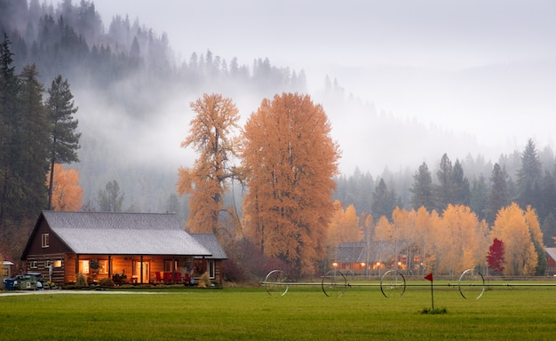 Barns in the autumn wood with fog