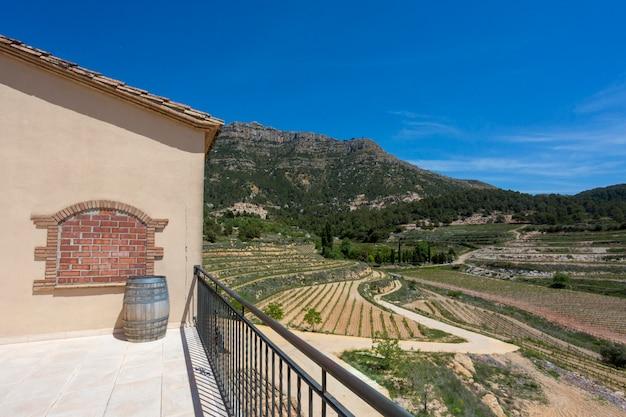 ブドウ畑と山の谷の背景にワインの樽