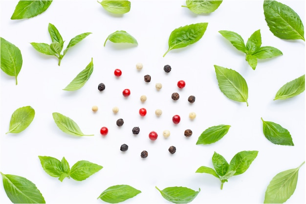 Basil leaves with  different type of peppercorns on white background.