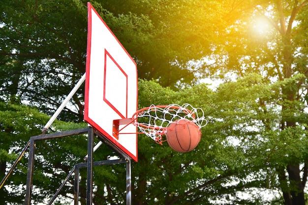 Basket ball  sport  for all