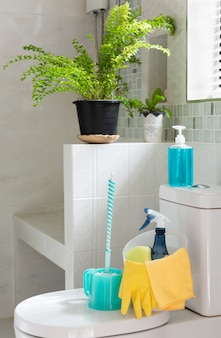 Basket of cleaning supplies on toilet bowl in modern bathroom with fresh green fern in rooom