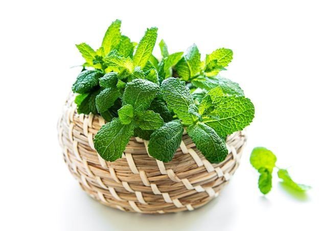 Basket of fresh mint. isolated on white surface