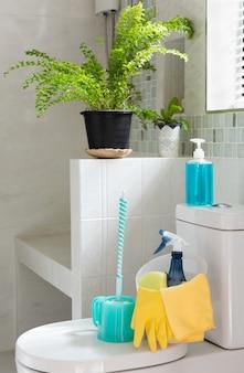 Корзина чистящих средств на унитазе в современной ванной комнате со свежим зеленым папоротником в комнате