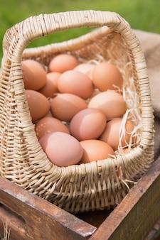 신선한 유기농 계란 바구니