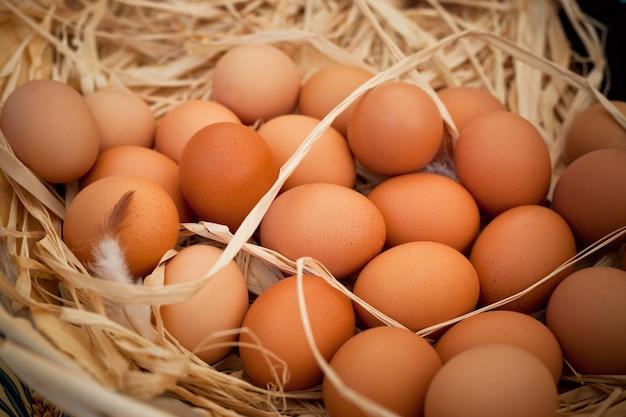 Корзина органических яиц на сельском фермерском рынке