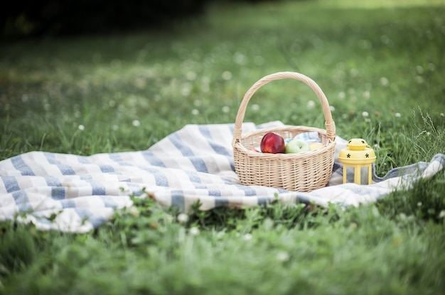 Basket with apples on the grass. picnic. summer. fruits. nature.
