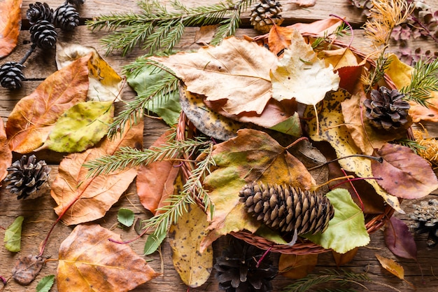 Basket with dry autumn leaves, branches and pine cones on a wooden background