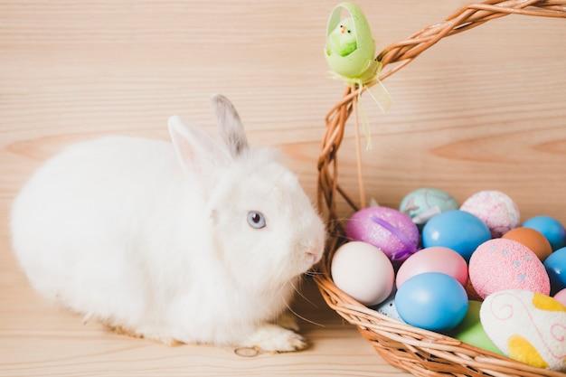 Basket with eggs near white rabbit