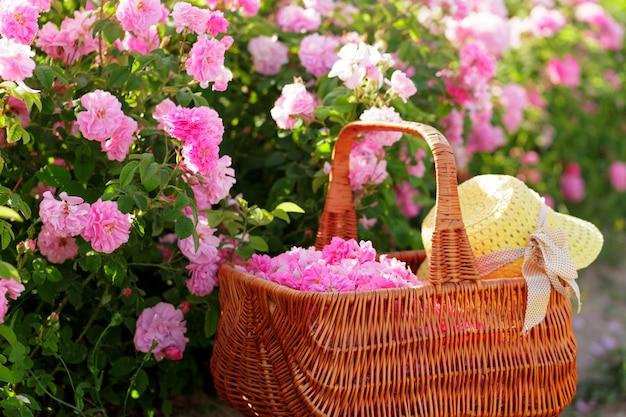 Корзина с цветком из розовых роз.