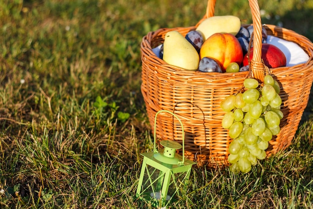 Basket with fruit on grass