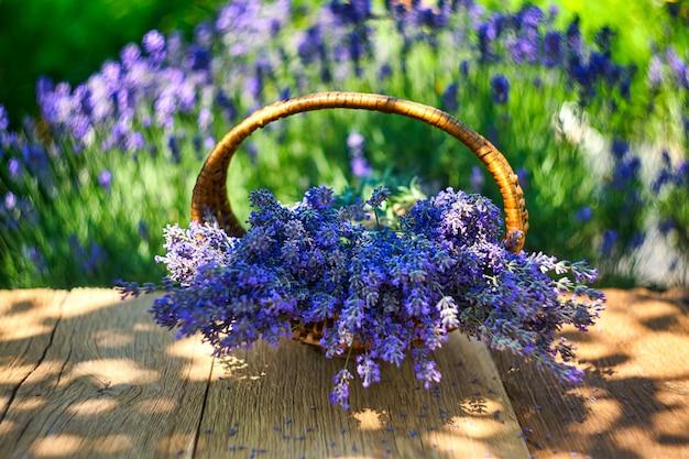 나무 테이블에 라벤더 꽃다발이 든 바구니