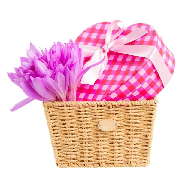 牧草地のサフラン紫の花と白で隔離のギフトボックスとバスケット