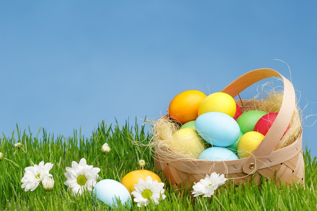 Basket with painted easter eggs on green grass. easter holiday concept.