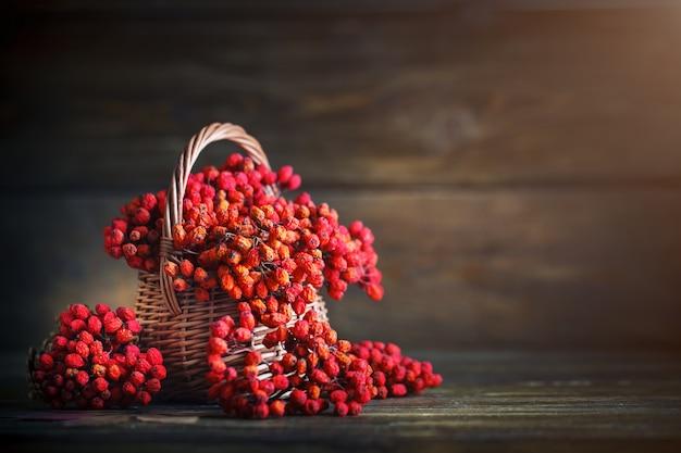 로 웬와 나무 테이블에 나뭇잎 바구니. 가을 정물.