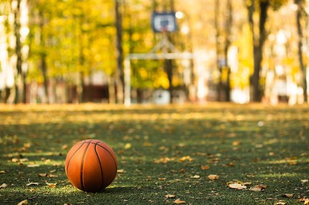 Basketball on green grass