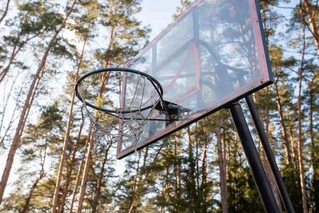 Basketball hoop in the forest. for any purpose.