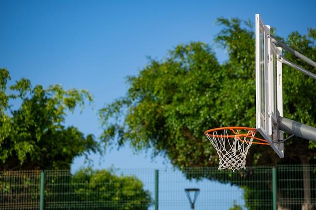나무가 있는 맑고 화창한 날 농구대