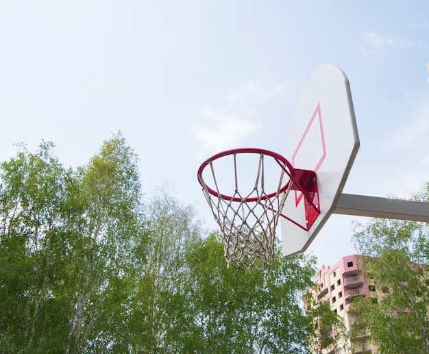 Basketball hoop in the park on a background green trees
