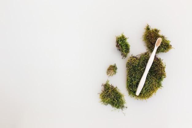 목욕 액세서리 flay 누워, 자연 개념으로 녹색 이끼로 고립 된 나무 칫솔 건강 관리, 에코, 제로 폐기물, 재사용 가능, 플라스틱 무료 환경 개념