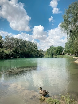 Место для купания в реке тежу в парке реки зорита-де-лос-канес, гвадалахара