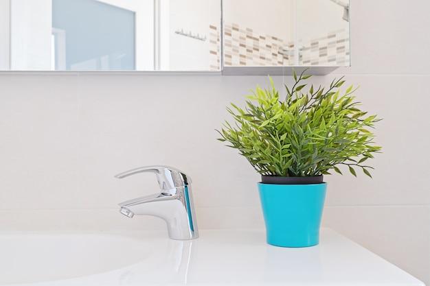 Bathroom design, fresh ficus plant in the interior.