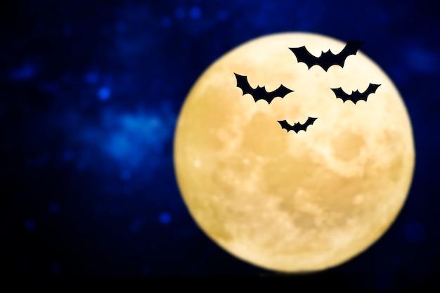 보름달 위로 실루엣을 비행하는 박쥐