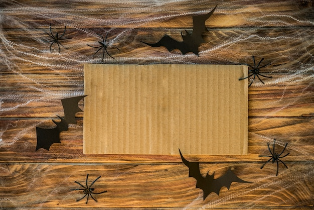 Bats and spiders in cobweb