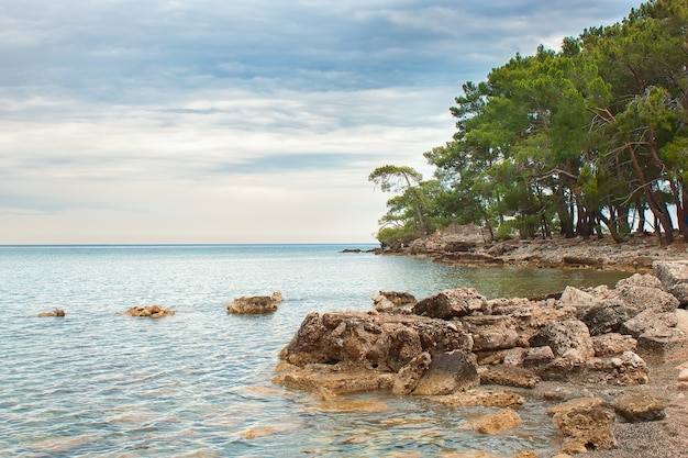 The bay of the ancient city phaselis in turkey. mediterranean sea landscape. antalya, kemer.