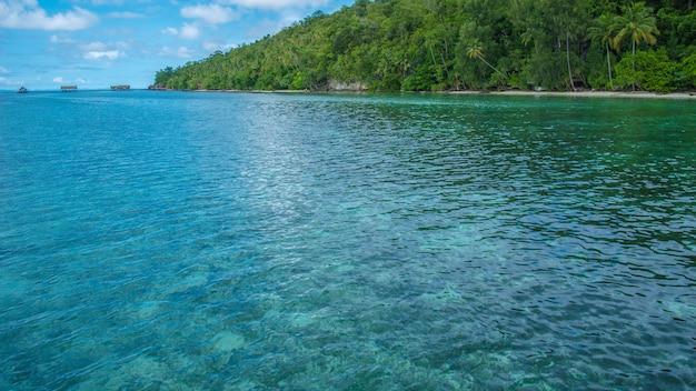 ダイビングステーションの前の湾とクリ島のホームステイ、満潮、ラジャアンパット、インドネシア、西パプア