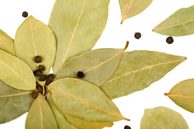 Bay leaves and black peppercorns isolated on white