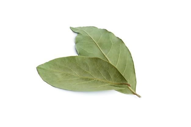 베이 잎에 고립 된 흰색 배경. 고품질 사진