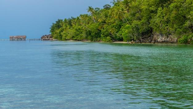 ダイビングステーションとゲストハウスの前にある水中サンゴのある湾、クリ島、ラジャアンパット、インドネシア、西パプア。