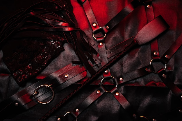 Bdsm set with leather whip and flogger, belt and choker