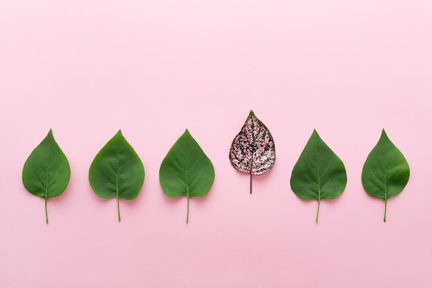 Be different concept with one leaf standing out of the crowd