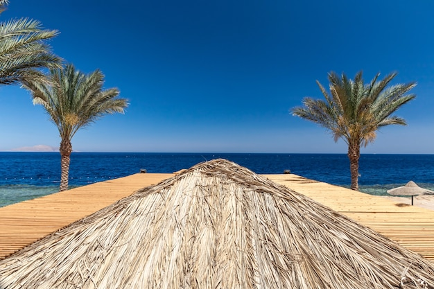 エジプト、シャルムエルシェイクの高級ホテルのビーチ