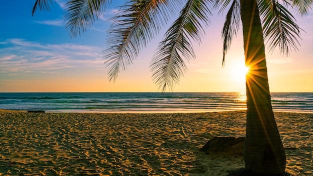 해변 가을 휴가 개념 배경 태양 빛 플레어 아름다운 일몰 또는 일출 풍경 배경으로 해변에 코코넛 야자수가 있는 자연 프레임.