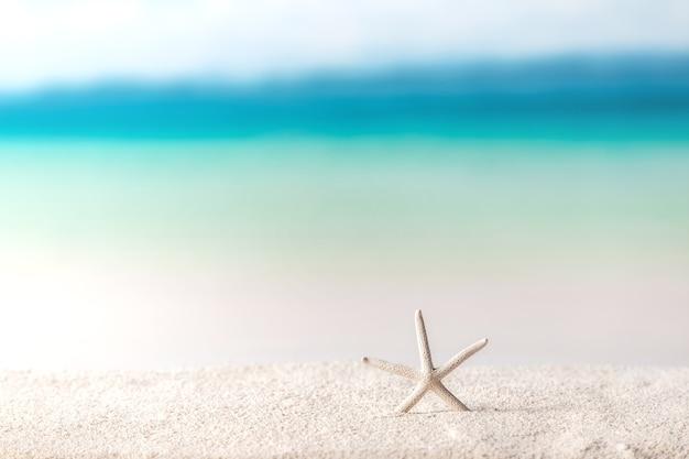 Фон пляжа, морские звезды на песке
