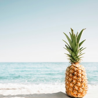 Beach background with pineapple