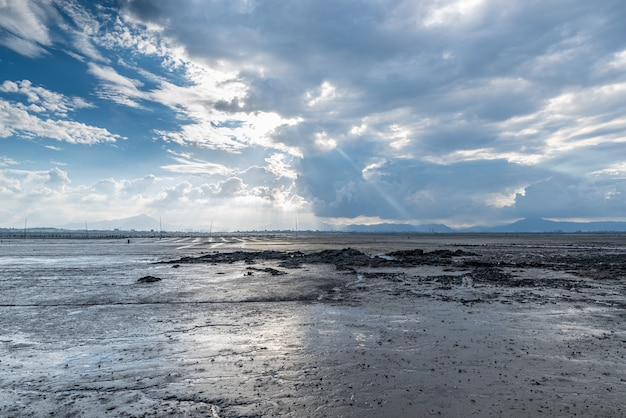 The beach under the blue sky and white clouds, fertile black land