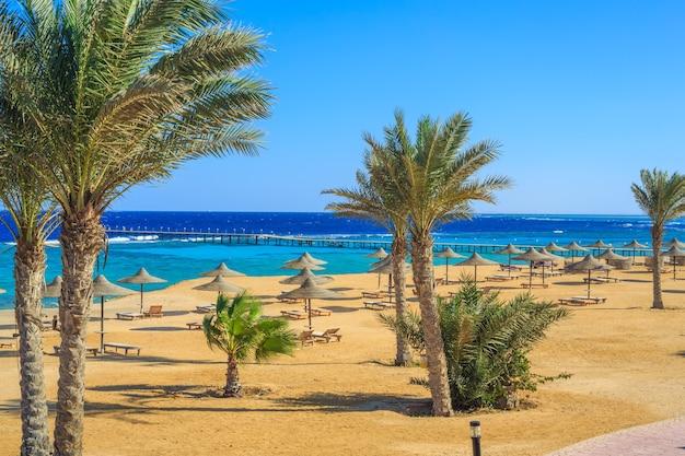 Пляж у моря с зонтиками и причалом для купания red sea egypt